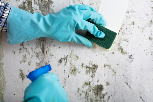 Do We Need to Clean Wall Before Painting?
